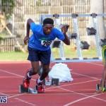 Track Bermuda, January 9 2016-30
