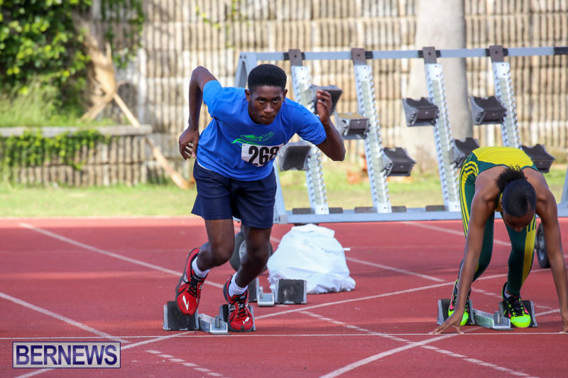 Track-Bermuda-January-9-2016-30