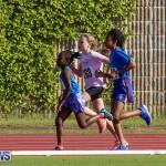 Track Bermuda, January 9 2016-34