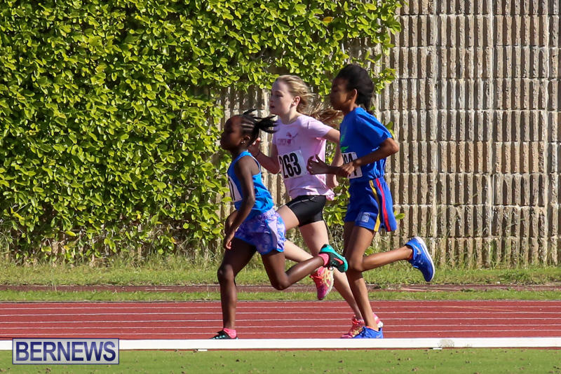 Track-Bermuda-January-9-2016-34