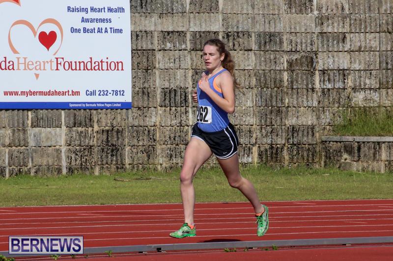 Track-Bermuda-January-9-2016-36