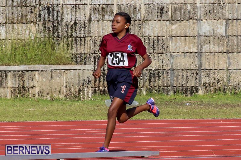 Track-Bermuda-January-9-2016-37