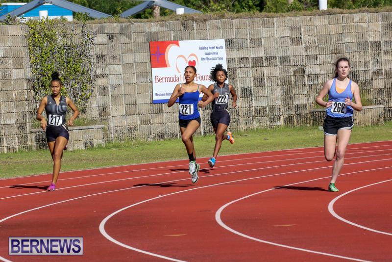 Track-Bermuda-January-9-2016-4