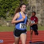 Track Bermuda, January 9 2016-40