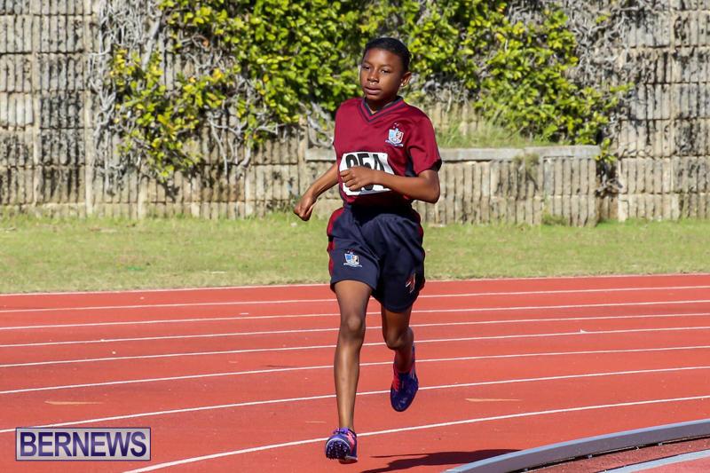 Track-Bermuda-January-9-2016-41
