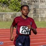 Track Bermuda, January 9 2016-42