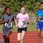 Track Bermuda, January 9 2016-44