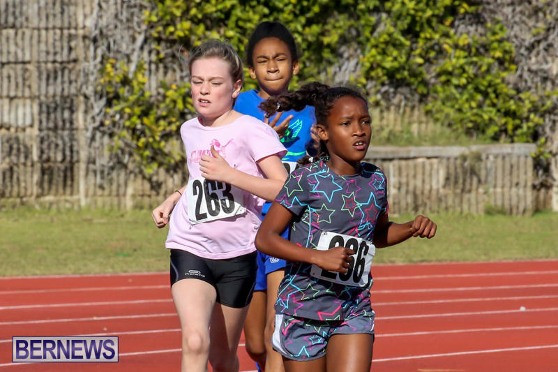 Track-Bermuda-January-9-2016-45