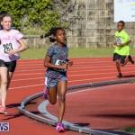 Track Bermuda, January 9 2016-46