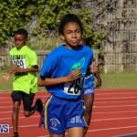 Track Bermuda, January 9 2016-48