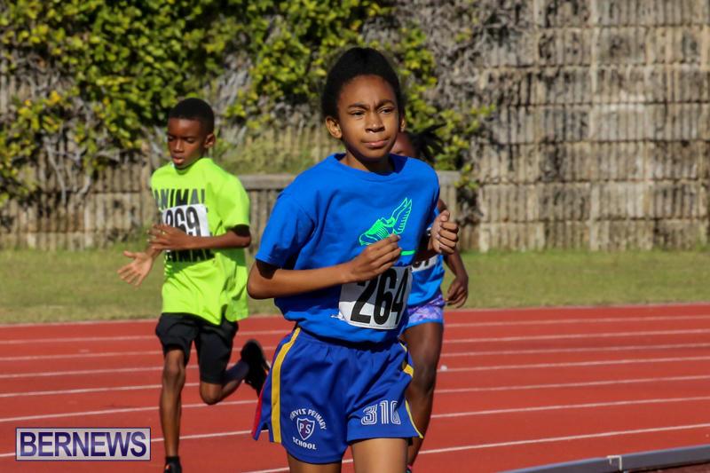 Track-Bermuda-January-9-2016-48