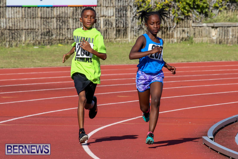 Track-Bermuda-January-9-2016-49