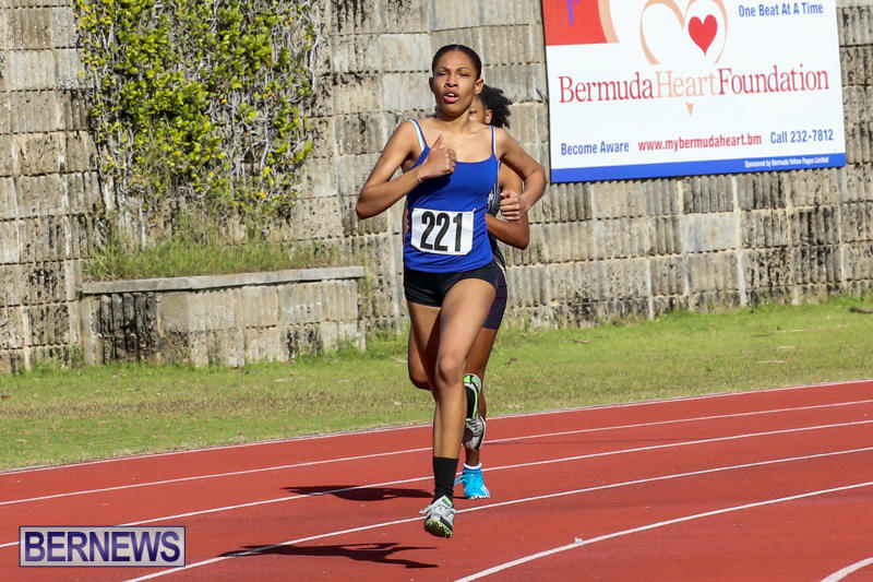 Track-Bermuda-January-9-2016-5