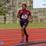 Track Bermuda, January 9 2016-52