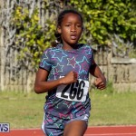 Track Bermuda, January 9 2016-54