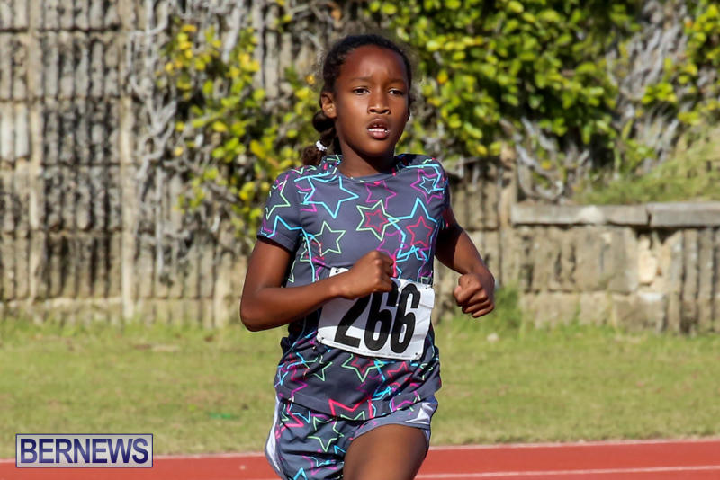 Track-Bermuda-January-9-2016-54