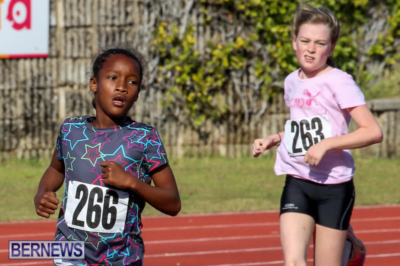 Track-Bermuda-January-9-2016-55