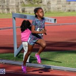 Track Bermuda, January 9 2016-56