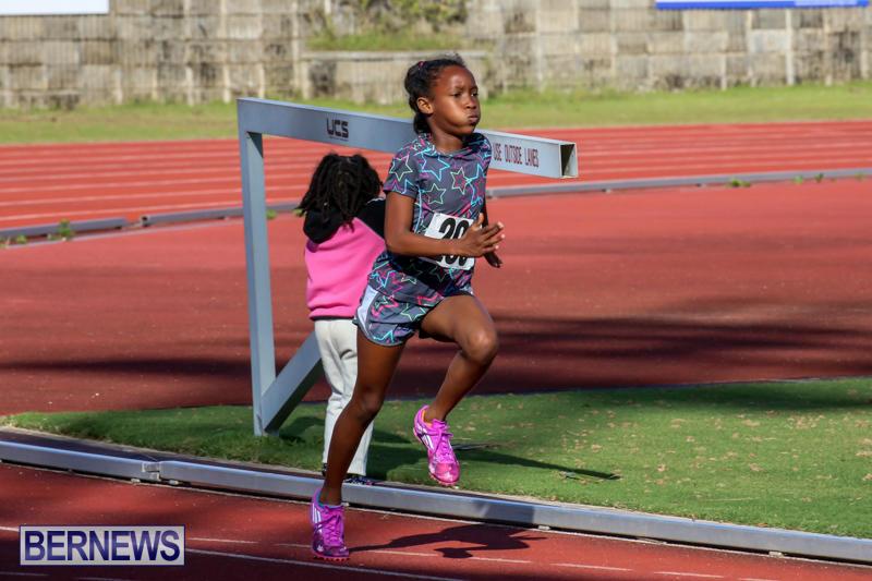 Track-Bermuda-January-9-2016-56