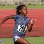 Track Bermuda, January 9 2016-57
