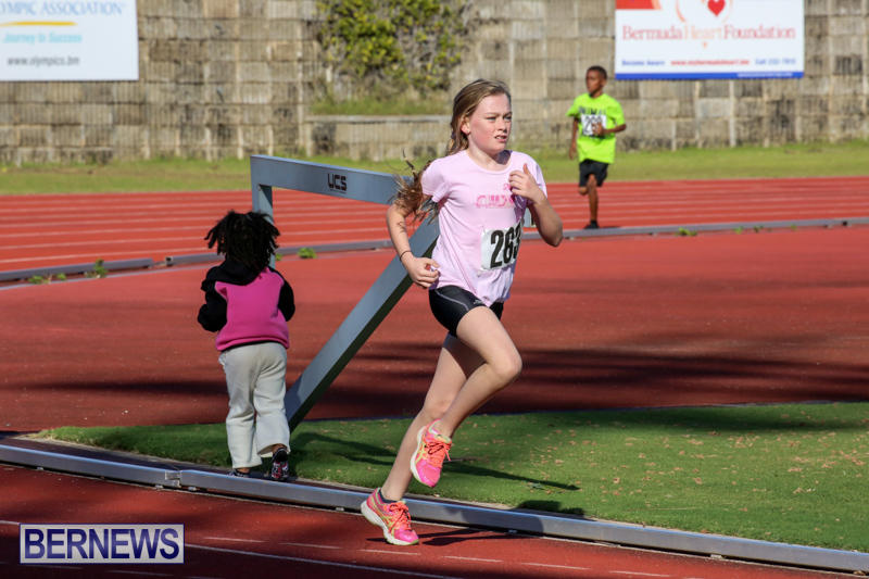 Track-Bermuda-January-9-2016-58