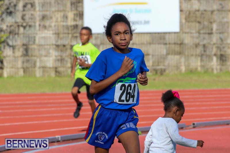 Track-Bermuda-January-9-2016-60
