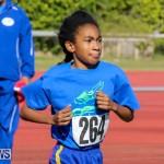 Track Bermuda, January 9 2016-61