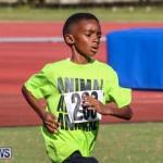 Track Bermuda, January 9 2016-63