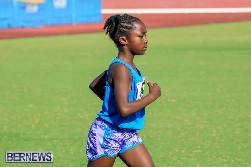 Track-Bermuda-January-9-2016-66