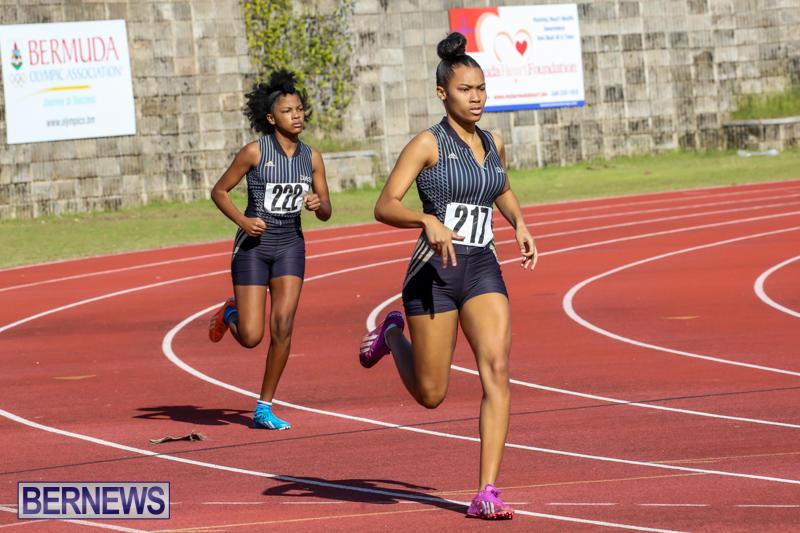 Track-Bermuda-January-9-2016-9