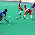 hockey Bermuda Jan 20 2016 (1)