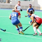 hockey Bermuda Jan 20 2016 (10)