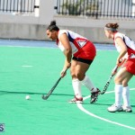 hockey Bermuda Jan 20 2016 (11)