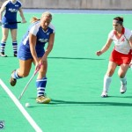 hockey Bermuda Jan 20 2016 (13)