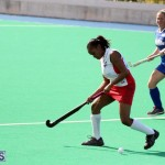 hockey Bermuda Jan 20 2016 (15)