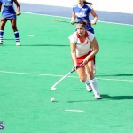 hockey Bermuda Jan 20 2016 (17)