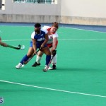 hockey Bermuda Jan 20 2016 (2)