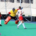 hockey Bermuda Jan 20 2016 (4)