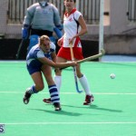 hockey Bermuda Jan 20 2016 (6)