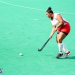 hockey Bermuda Jan 20 2016 (7)
