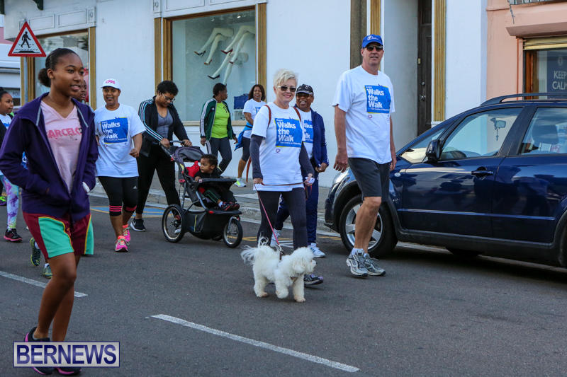 Argus-Walks-The-Walk-Bermuda-February-28-2016-13