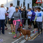Argus Walks The Walk Bermuda, February 28 2016-3