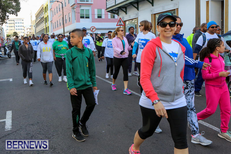 Argus-Walks-The-Walk-Bermuda-February-28-2016-41