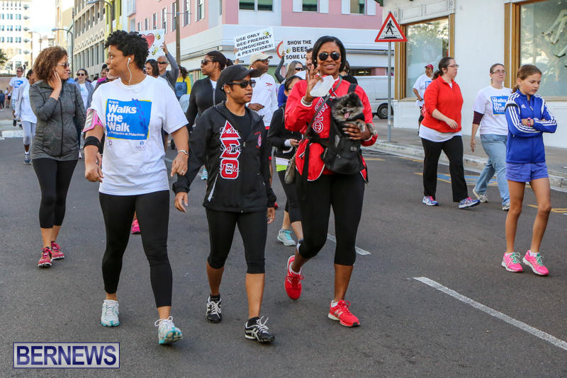 Argus-Walks-The-Walk-Bermuda-February-28-2016-54