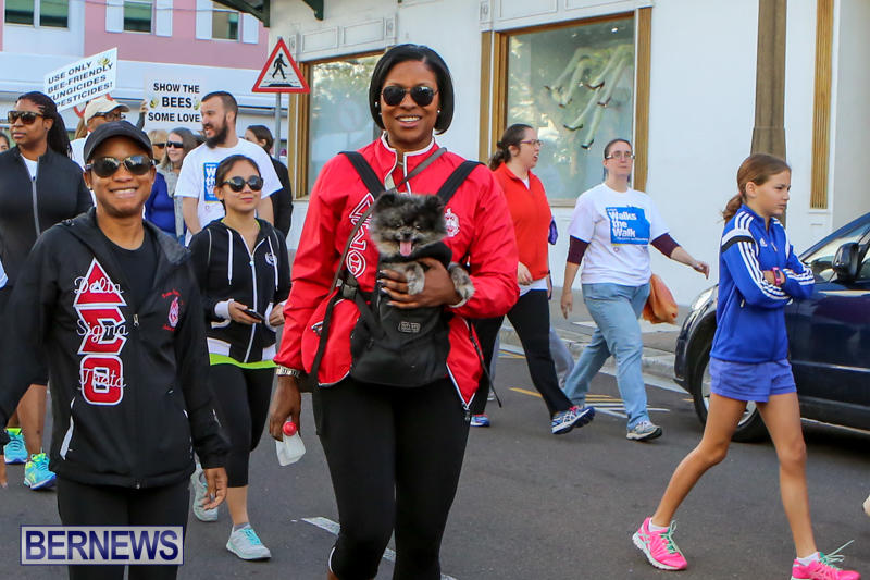 Argus-Walks-The-Walk-Bermuda-February-28-2016-55