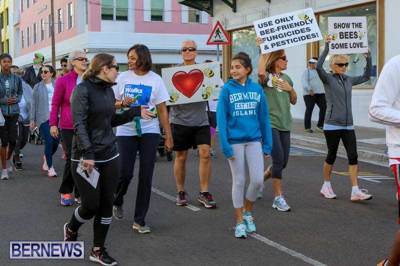 Argus-Walks-The-Walk-Bermuda-February-28-2016-58