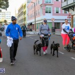 Argus Walks The Walk Bermuda, February 28 2016-87