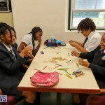 BHS Ascendant STEM Workshop Bermuda, February 23 2016-8