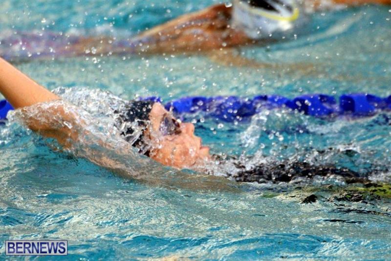 Bermuda-Swimming-Feb-2016-3