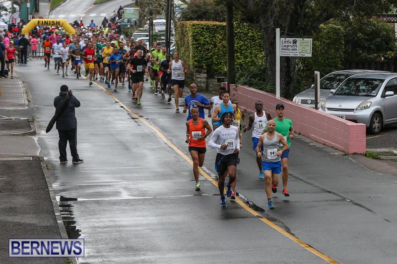 Butterfield-Vallis-5K-Run-Walk-Bermuda-February-7-2016-1